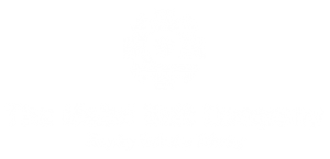 Metal Belt Company